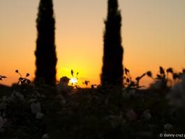 Sunset in SoCal - Danny Cruz Photo
